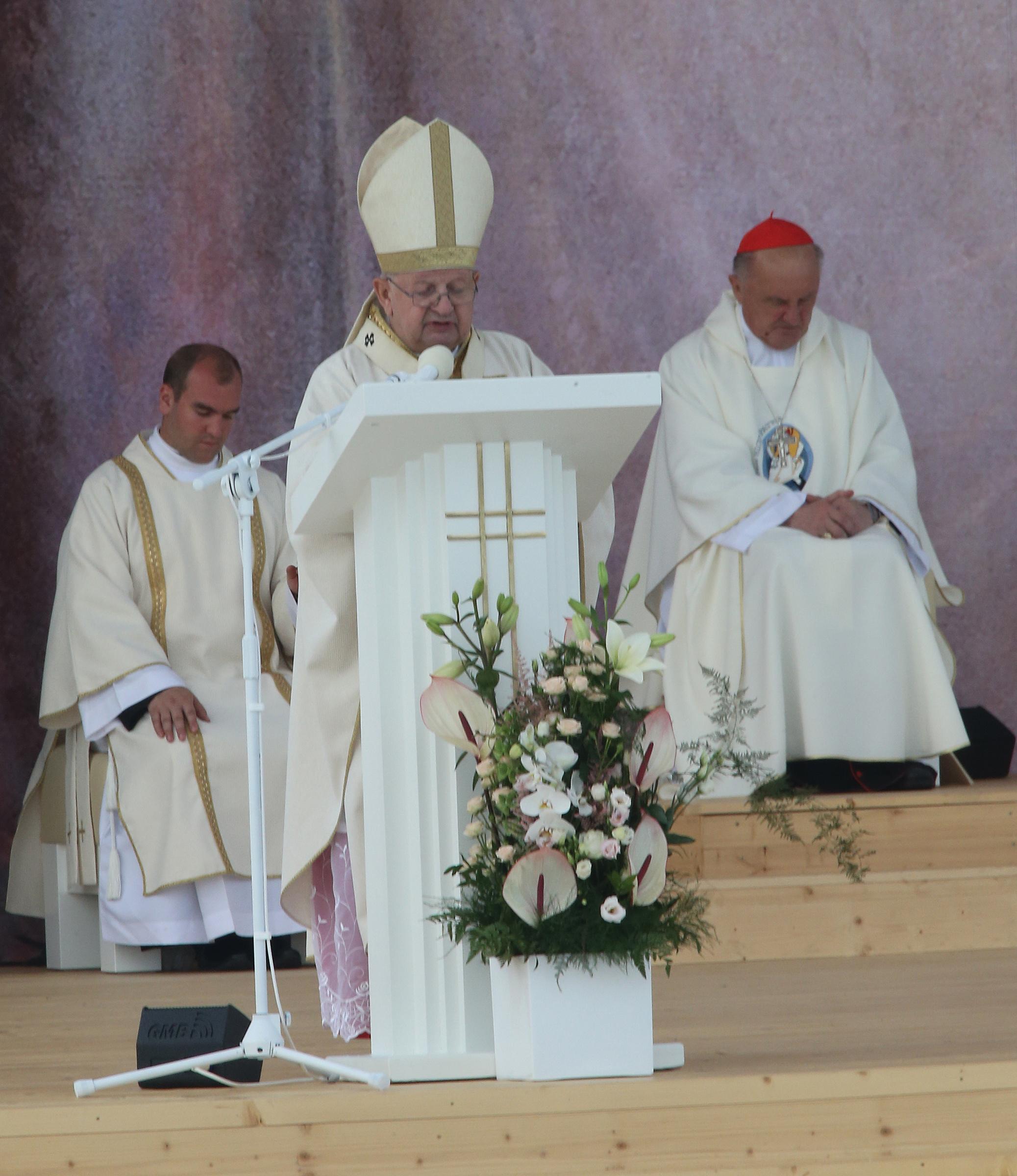 Cardinal Stanislaw Dziwisz