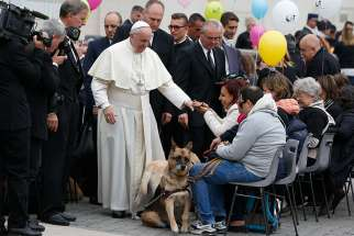 Pope Francis greets visually impaired people, accompanied by their dogs, during his general audience in St. Peter's Square at the Vatican Oct. 18
