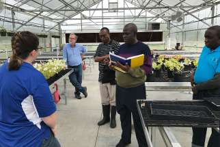 A delegation from Uganda tours a greenhouse June 6 at Paris High School in St. Paris, Ark. Pictured from left are: Paris agriculture teacher Nicole Beirne; Bruce White, Catholic Relief Services project director; George Ntibarikure, agriculture adviser for CRS in Uganda; Mathias Mutema Mulumba with the National Curriculum Development Center; and Ronald Ddungu, deputy head teacher at the Gayaza Girls High School in Uganda.