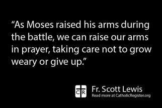 Fr. Scott Lewis writes about the need to be persistent in our prayers.