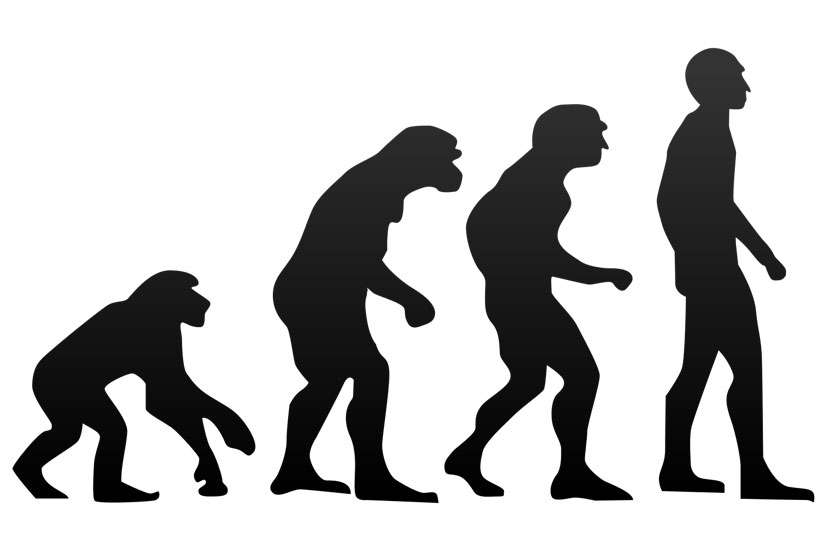 Why some evangelicals changed their minds about evolution