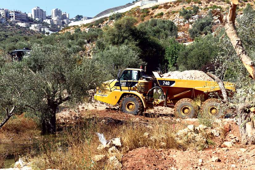 Israeli heavy equipment loads an olive tree after it was uprooted to to make way for the controversial separation barrier in the Cremisan Valley in Beit Jalla, West Bank, Sept. 3.