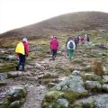"Pilgrims are invited to Ireland this year for ""Gathering Ireland 2013."" Among the pilgrimages to make is a hike up Croagh Patrick."