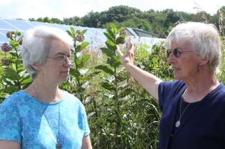 "A Pew Research survey found that more than 68 per cent of American self-identified Catholics say that the ""Earth is warming."" In this July 2014 photo, St. Francis Sister Jane Frances Omler, right, and St. Francis Sister Jacqueline Doepker talk in front of solar panels near the energy-efficient straw-bale house they helped build in Tiffin, Ohio."