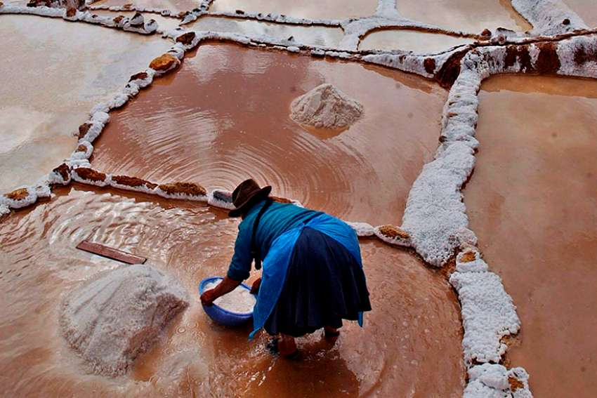 A Peruvian woman is seen working at the Maras saltern, a hypersaline environment in the Peruvian Andes.