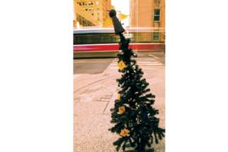 Topped by the Good Shepherd Angel, homeless Christmas trees placed around downtown Toronto by the Good Shepherd shelter intend to remind the city about the 5,000 homeless people sleeping outside or in shelters nightly. This tree at King and Bay Streets comes with a social media campaign behind it with the hashtag #HomelessChristmas.
