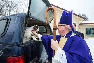 A good weekend to be a Catholic goat