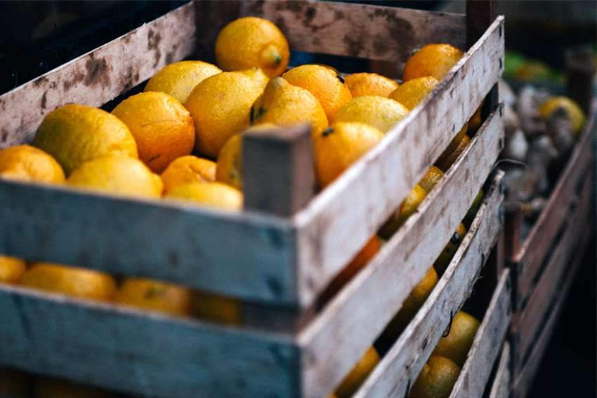 Harry McAvoy: Creating purpose from life's lemons