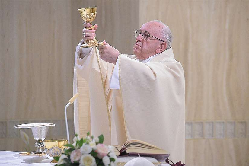 Pope Francis elevates the chalice as he celebrates Mass in the chapel of the Domus Sanctae Marthae at the Vatican April 26.