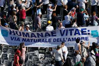 "A banner referencing ""Humanae Vitae,"" the 1968 encyclical of Blessed Paul VI, is seen in the crowd at the conclusion of the beatification Mass of Blessed Paul celebrated by Pope Francis in St. Peter's Square at the Vatican Oct. 19, 2014."