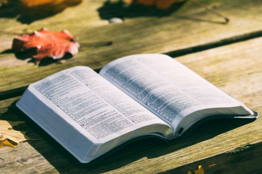 God's Word on Sunday: Scripture holds many lessons in humility