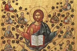 Christ as the True Vine.