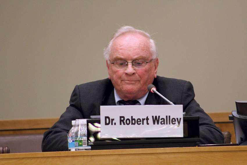 MaterCare International Founder Dr. Robert Walley addresses an event at UN headquarters on maternal health care in Africa in 2016.