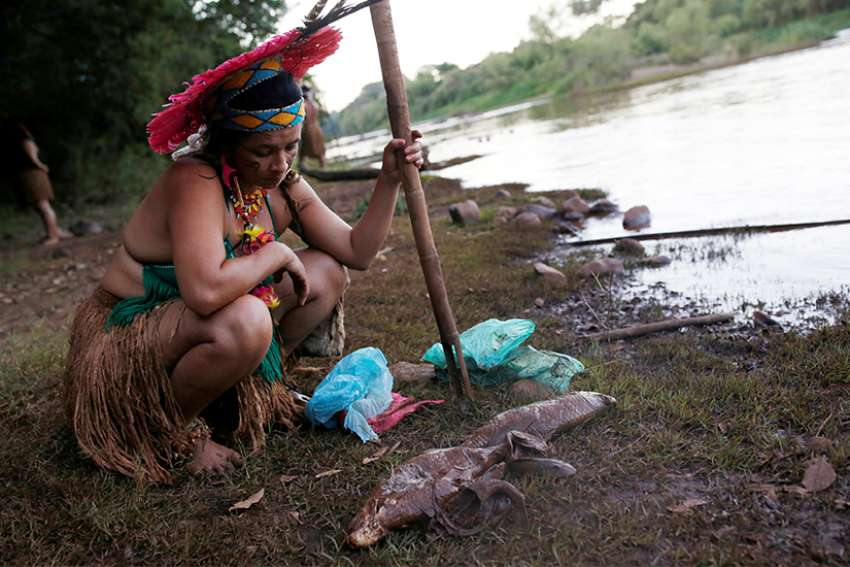 An woman from the Pataxo Ha-ha-hae tribe looks at dead fish near the Paraopeba River after a tailings dam owned by Brazilian mining company Vale SA collapsed near Sao Joaquim de Bicas, Brazil, Jan. 28, 2019.