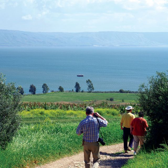 Overlooking the Sea of Galilee, the Gospel Trail leads down the hill to the town of Capernaum.