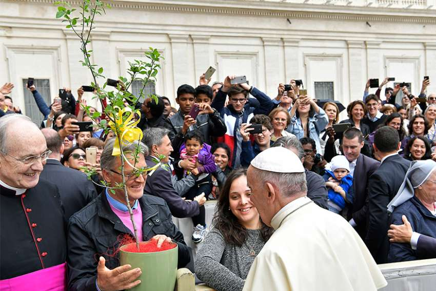 "Sergio Guidi, president of the Italian tree conservation association, ""Patriarchi della Natura,"" presents a potted tree to Pope Francis at his general audience April 18. The association presented eight saplings from tree species that are threatened or endangered with extinction. The saplings were planted in the Vatican Gardens."