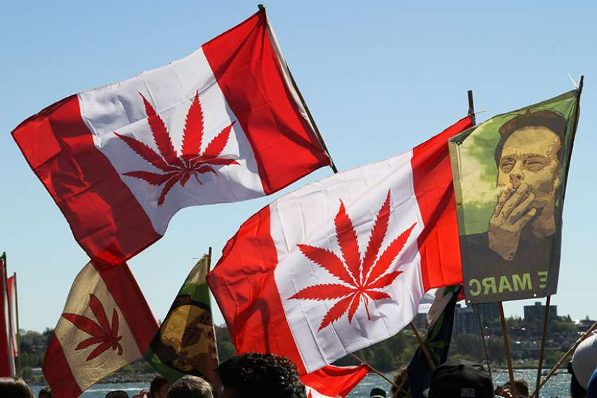 Pro-marijuana flags as seen at the Global Marijuana March 2013 in Vancouver, B.C. Legalizing pot doesn't make it a wise consumer choice or a safe one, writes editorial.