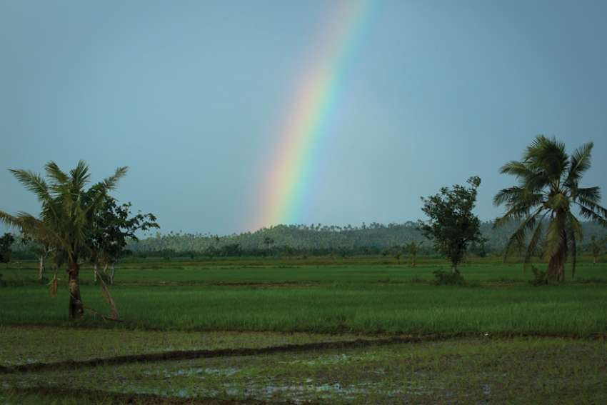 A rainbow is a sign of God's covenant and blessing to humans.