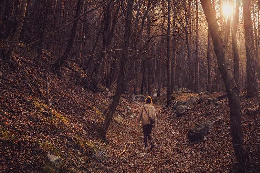 Vanessa Santilli-Raimondo: Forest bathing cleanses mind and body
