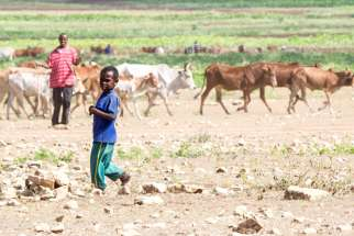 Over 10 million people face hunger in Ethiopia, one of several African countries hit by drought.