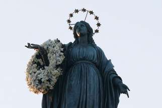 "The International Marian Association have submitted a request with Pope Francis for the public recognition of Mary as ""Co-Redemptrix with Jesus the Redeemer."""