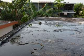 Standing water is seen on a flat roof in San German, Puerto Rico, in this undated photo. Puddles of water contribute to the spread of Zika in Puerto Rico.