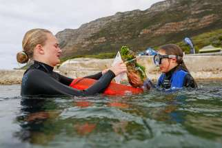 South African snorkelers count and log the details of the plastic and other waste retrieved from the sea bed of the Indian Ocean off Millers Point on July 29 in Cape Town. The ecumenical World Day of Prayer for the Care of Creation is Sept. 1. Supported by both Pope Francis and Orthodox Ecumenical Patriarch Bartholomew of Constantinople, the 2018 celebration is focused on the importance of water.