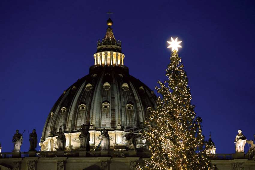 "The Christmas tree in St. Peter's Square at the Vatican is adorned with lights that are""next generation,"" according to officials, and are meant to have a reduced impact on the environment and use less energy."