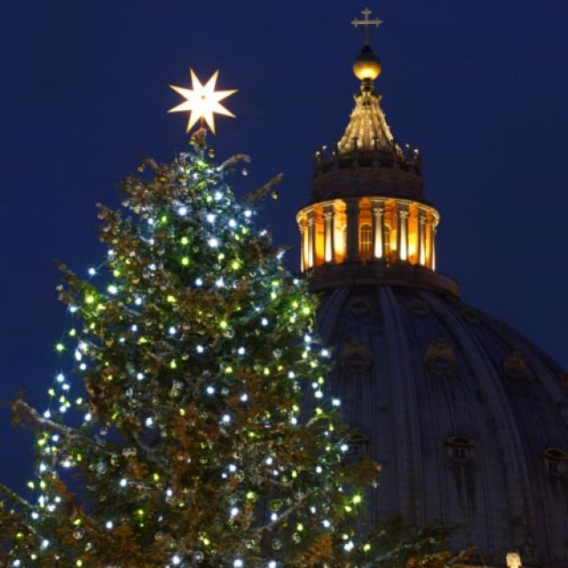 A Christmas tree decorates St. Peter's Square after a lighting ceremony at the Vatican Dec. 14. The 78-foot silver fir tree is from the Italian province of Isneria.
