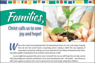 "The Catholic Organization for Life and Family released a 12-page booklet titled, ""Families, Christ calls us to sow joy and hope!"""